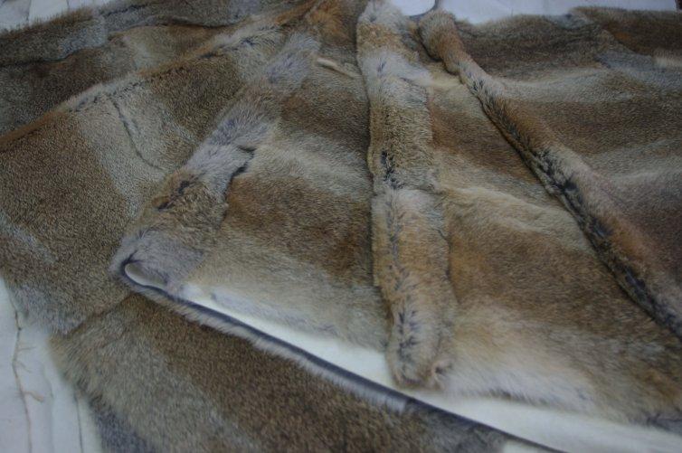 Bandas de conejo liebre