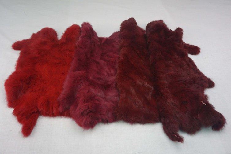 Conejo Gama Rojos