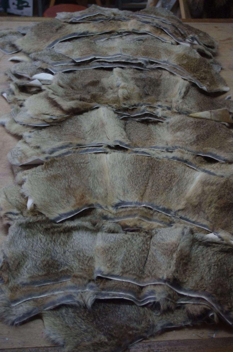 Cuellos de Piel de Conejo