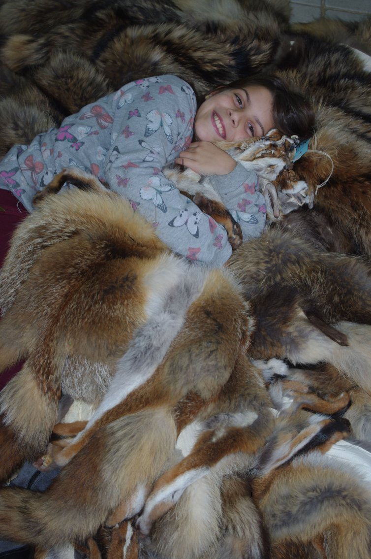 Pieles de Red Fox