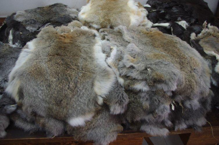 Pieles de conejo liebre