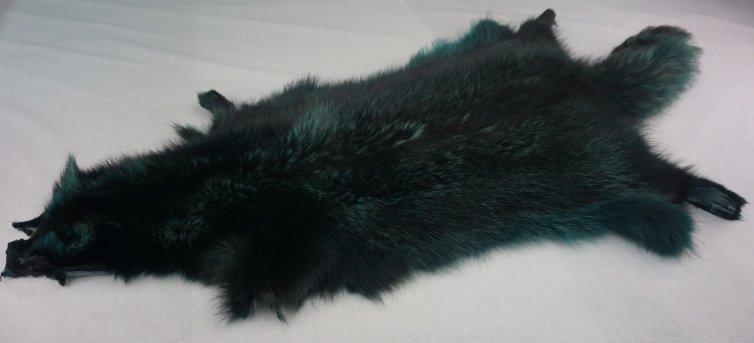 Racoon Verde