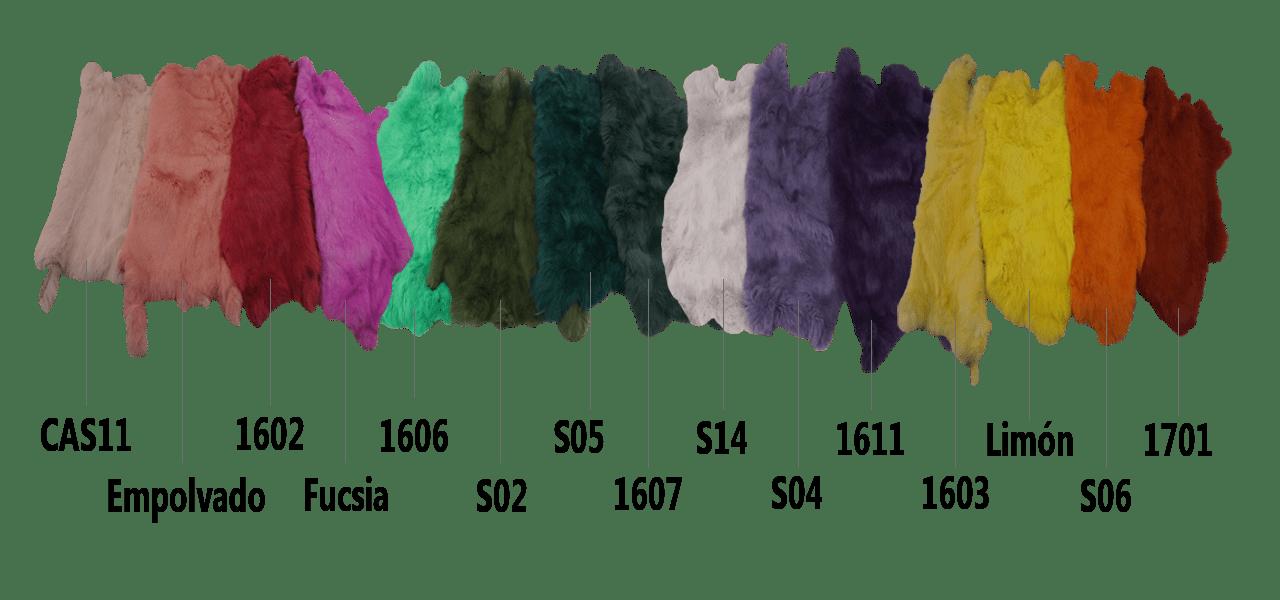 Paleta de colores2
